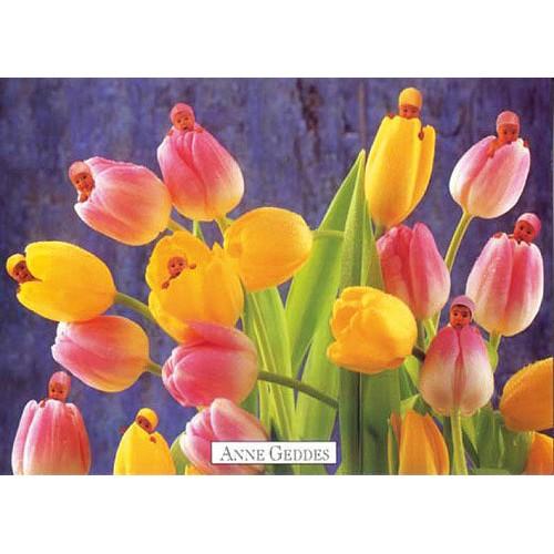 Pohlednice Anne Geddes tulipáni (71)