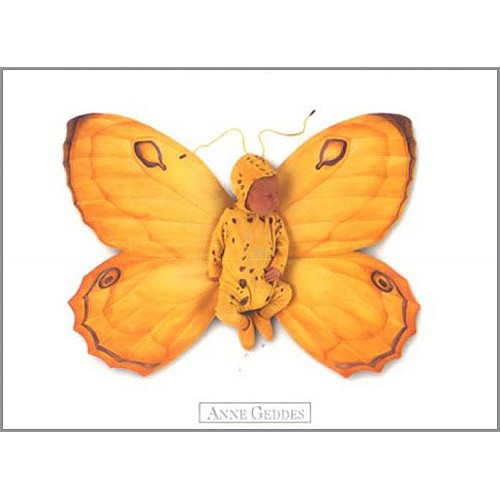 Pohlednice Anne Geddes žlutý motýl
