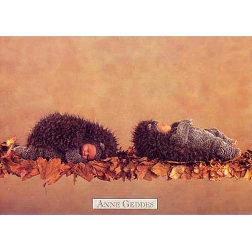 Pohlednice Anne Geddes dva ježci (65)