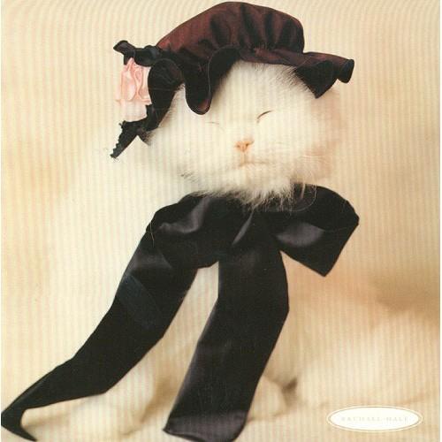 Blahopřání Rachael Hale kotě s čepicí 6681