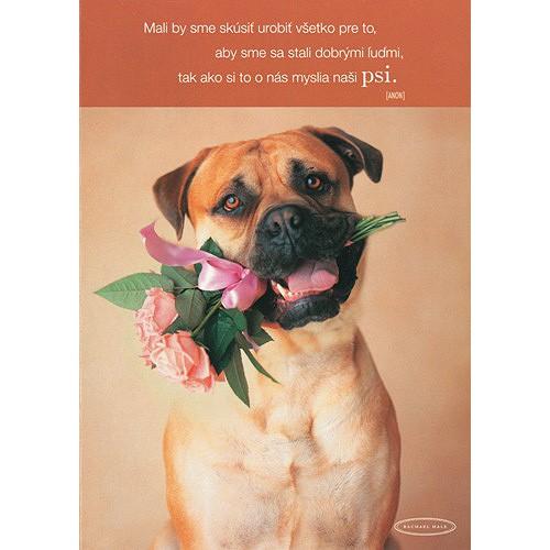 Blahopřání Rachael Hale pes s ružami v papuli