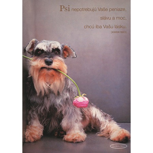 Blahopřání Rachael Hale pes s ružovým kvetom