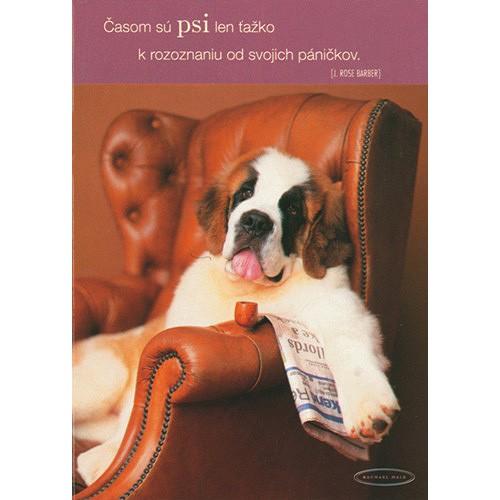 Blahopřání Rachael Hale pes v kresle
