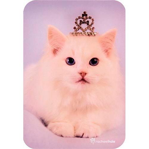 Blahopřání Rachael Hale Louis kočka s korunkou