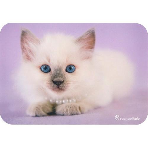 Blahopřání Rachael Hale Brooke kočka a perly