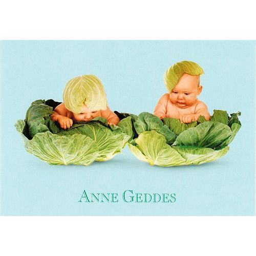 Blahopřání Anne Geddes Blahopřání malé, ECI  - dva v kapustě