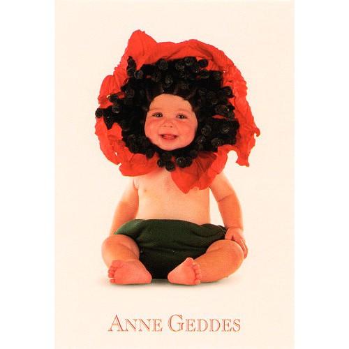 Blahopřání Anne Geddes Blahopřání malé, ECI  - poppy