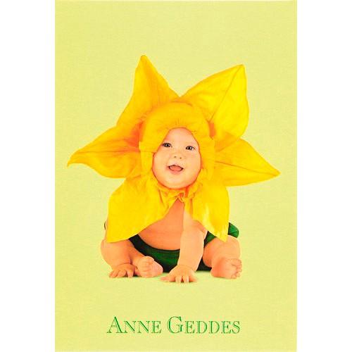Blahopřání Anne Geddes Blahopřání malé, ECI - narcis