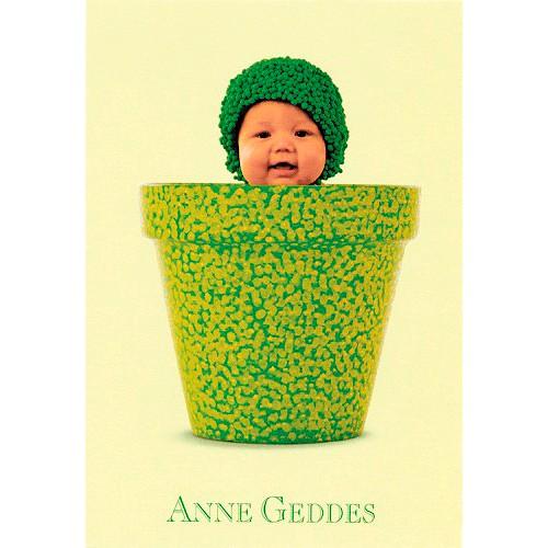 Blahopřání Anne Geddes Blahopřání malé, ECI - květináč na zeleno