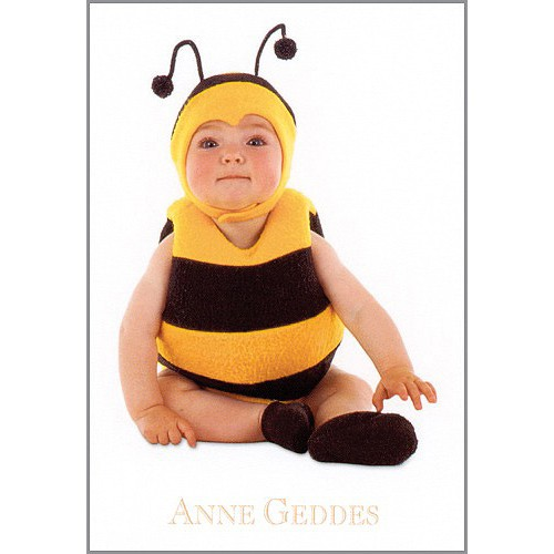 Blahopřání Anne Geddes Blahopřání malé, ECI - včelka