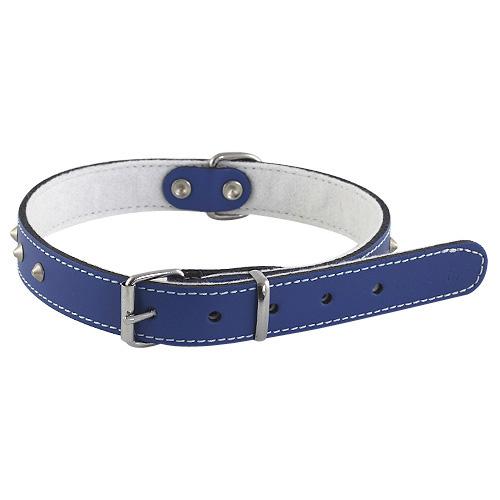 B & F Obojek kožený podšitý 1,8x47cm modrý zdobený jehlánky