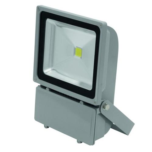 Reflektor Eurolite Eurolite LED IP FL-100 COB 6400K 120°