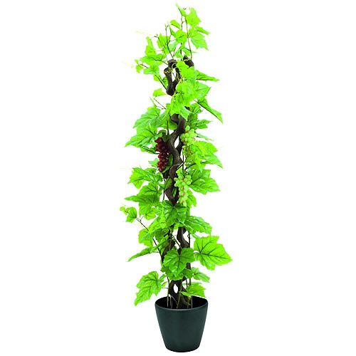 Vinná réva Europalms s hrozny, výška 160 cm