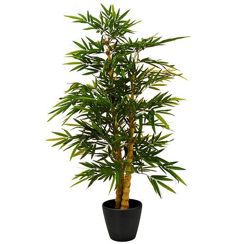 Bambus Europalms s perleťovým kmenem, výška 180 cm