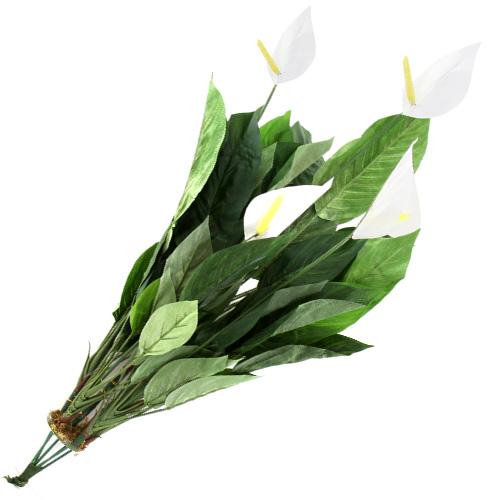Spathiphyllum Europalms výška 71 cm