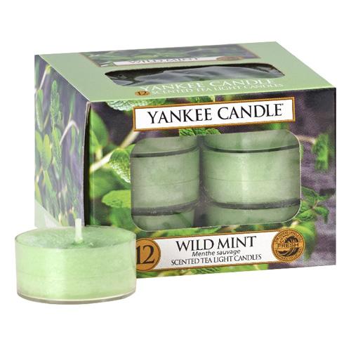 Svíčky čajové Yankee Candle Divoká máta, 12 ks