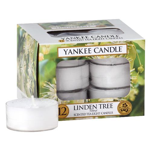 Svíčky čajové Yankee Candle Lipový strom, 12 ks