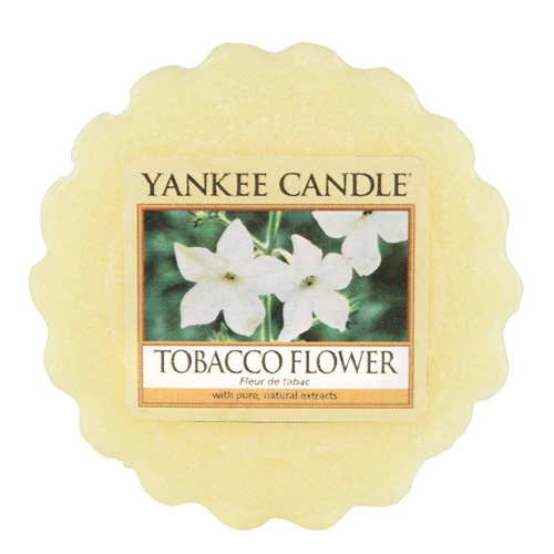 Vonný vosk Yankee Candle Tabákový květ, 22 g