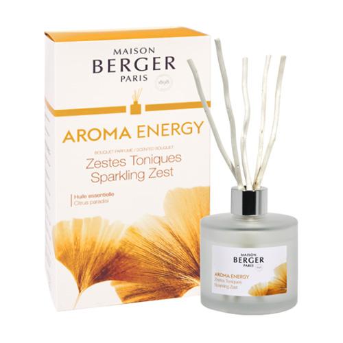 Lampe Berger Skleněný difuzér Maison Berger Paris Čerstvé tonikum, 180 ml, vrbové tyčinky