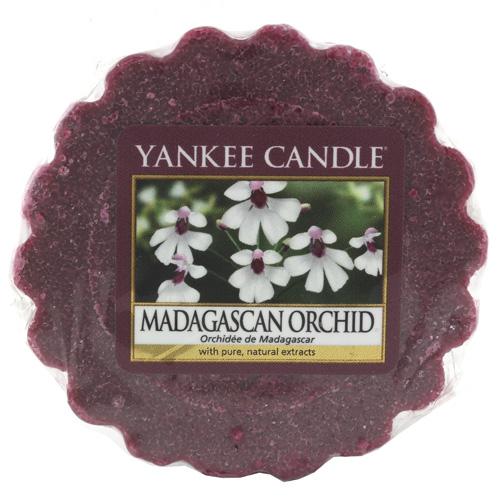 Vonný vosk Yankee Candle Orchidej z Madagaskaru, 22 g