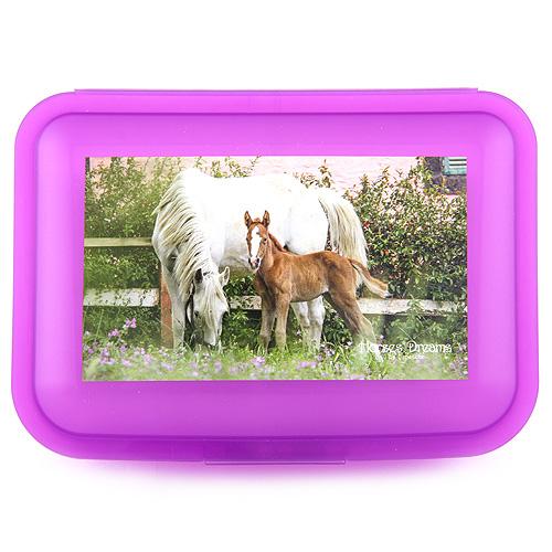 Svačinový box Horses Dreams Fialový transparentní box, fotka bílého koně s hříbětem